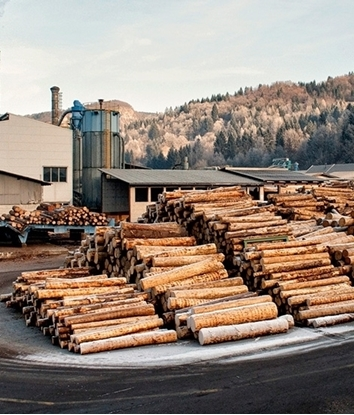 Purchase of Logs
